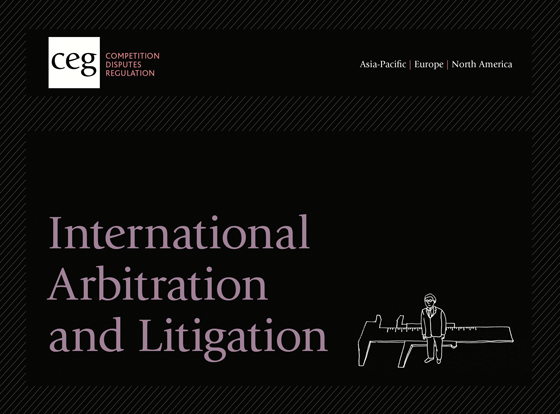 International Arbitration and Litigation